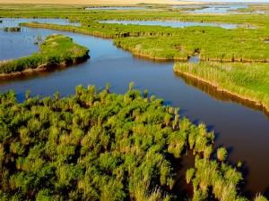 Delta-Dunarii-Murighiol